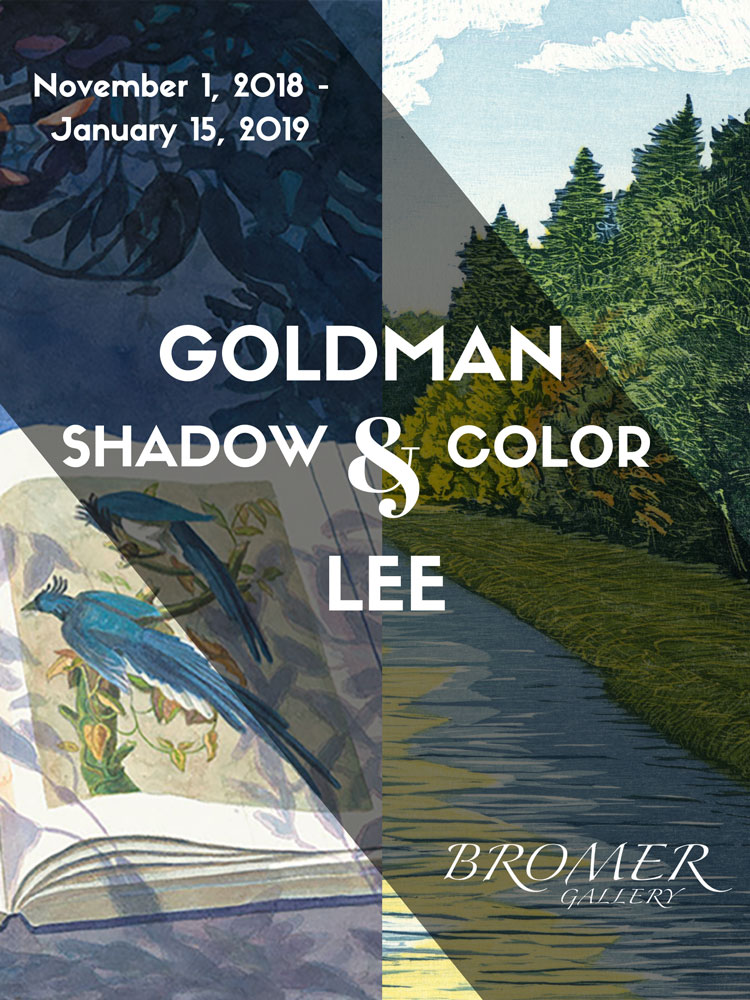 Goldman and Lee: Shadow and Color
