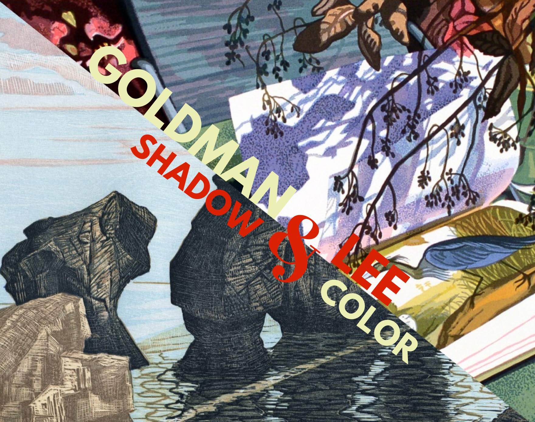 """Goldman and Lee: Shadow and Color"" Opening Reception"